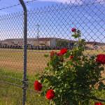 東京・東京周辺の米軍基地:相模総合補給廠