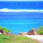 移設拒否の論理(2)非合理で曖昧な「沖縄の心」と「過剰な基地負担」
