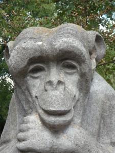 monkey-177468_1920