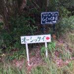 密林の秘境・オーシッタイ(1)